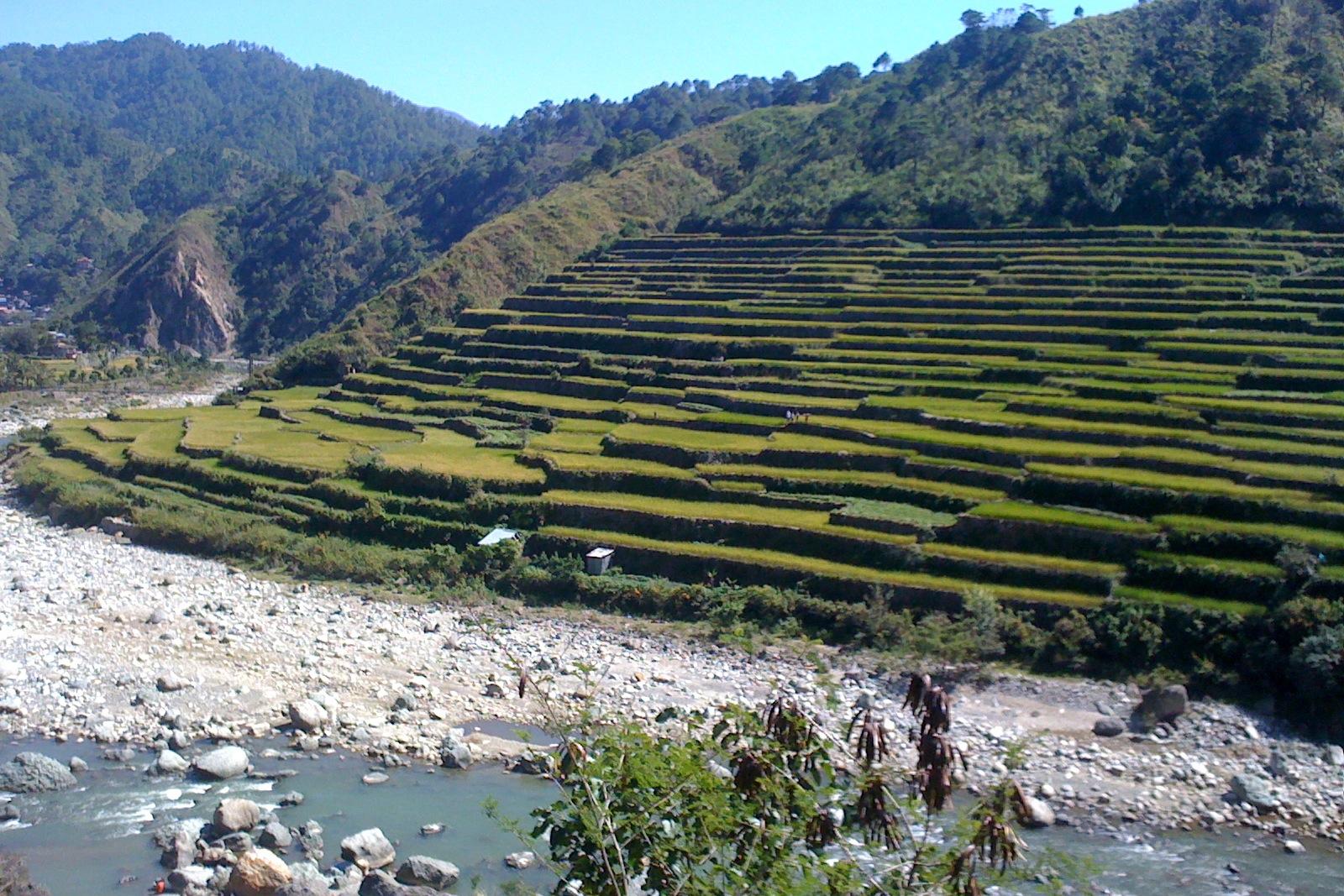 Rijstterrassen_Bontok,_filipijnen